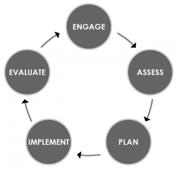 Overview diagram of the five step project managment process described in the text