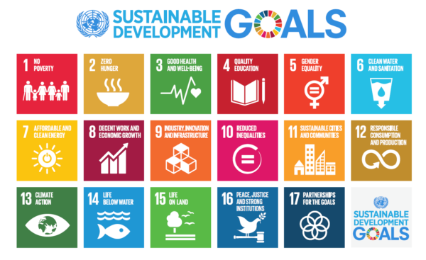 The logos in miniature and different colors for all seventeen sustainable development goals. Image: United Nations.