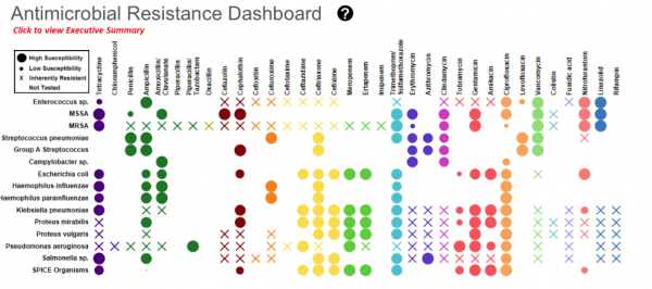 Resistance Dashboard showing a crossable with antibiotics and bacteria