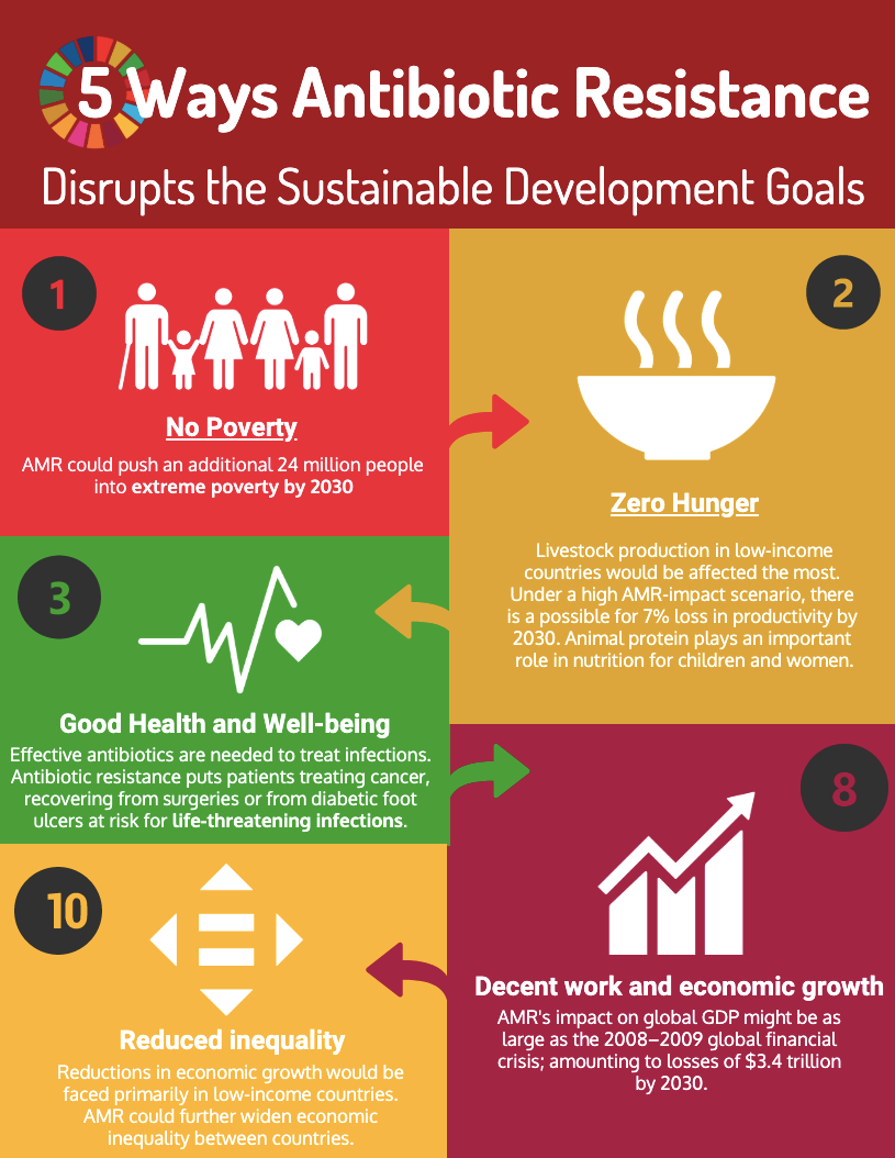 Infographics how AMR affects SDGs